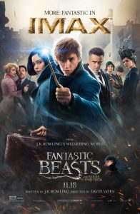 fantastic_beasts_and_where_to_find_them-229500301-large